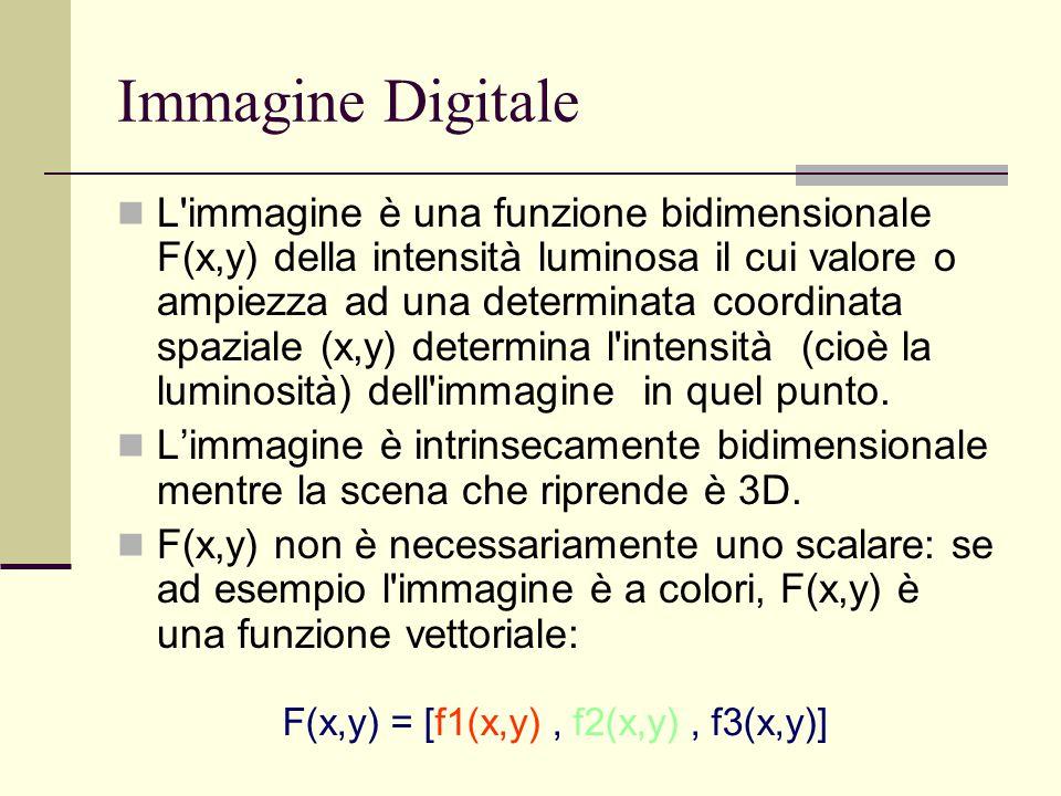 Immagine Digitale L'immagine è una funzione bidimensionale F(x,y) della intensità luminosa il cui valore o ampiezza ad una determinata coordinata spaz