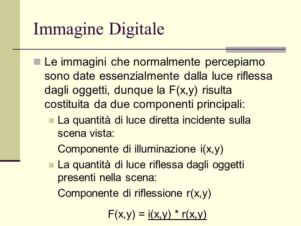 Immagine Digitale Le immagini che normalmente percepiamo sono date essenzialmente dalla luce riflessa dagli oggetti, dunque la F(x,y) risulta costitui