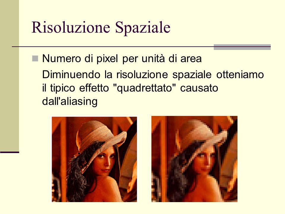 Risoluzione Spaziale Numero di pixel per unità di area Diminuendo la risoluzione spaziale otteniamo il tipico effetto