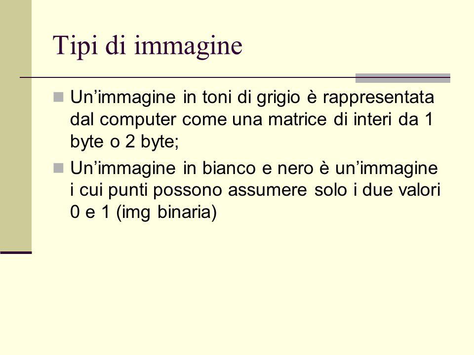 Tipi di immagine Un'immagine in toni di grigio è rappresentata dal computer come una matrice di interi da 1 byte o 2 byte; Un'immagine in bianco e ner