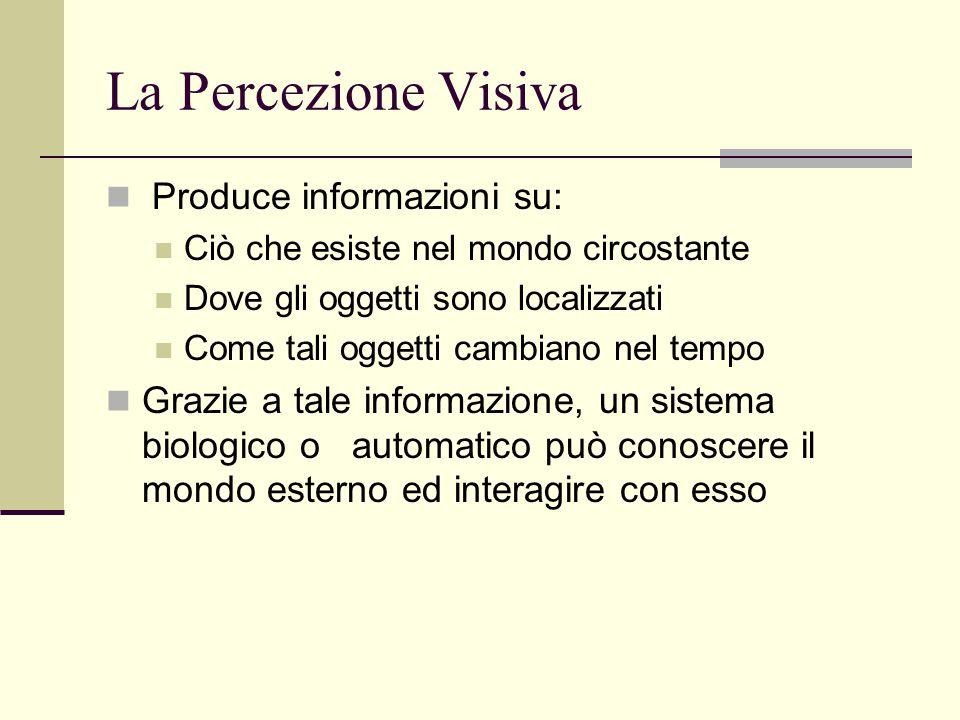 La Percezione Visiva Produce informazioni su: Ciò che esiste nel mondo circostante Dove gli oggetti sono localizzati Come tali oggetti cambiano nel te