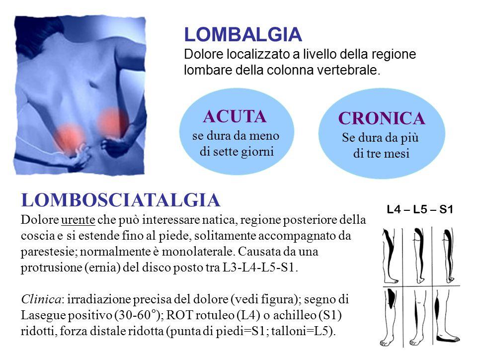 LOMBALGIA Dolore localizzato a livello della regione lombare della colonna vertebrale. ACUTA se dura da meno di sette giorni CRONICA Se dura da più di