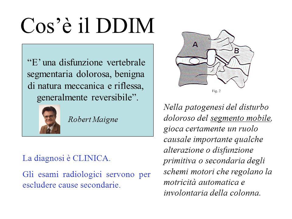 """Cos'è il DDIM """"E' una disfunzione vertebrale segmentaria dolorosa, benigna di natura meccanica e riflessa, generalmente reversibile"""". Robert Maigne Ne"""
