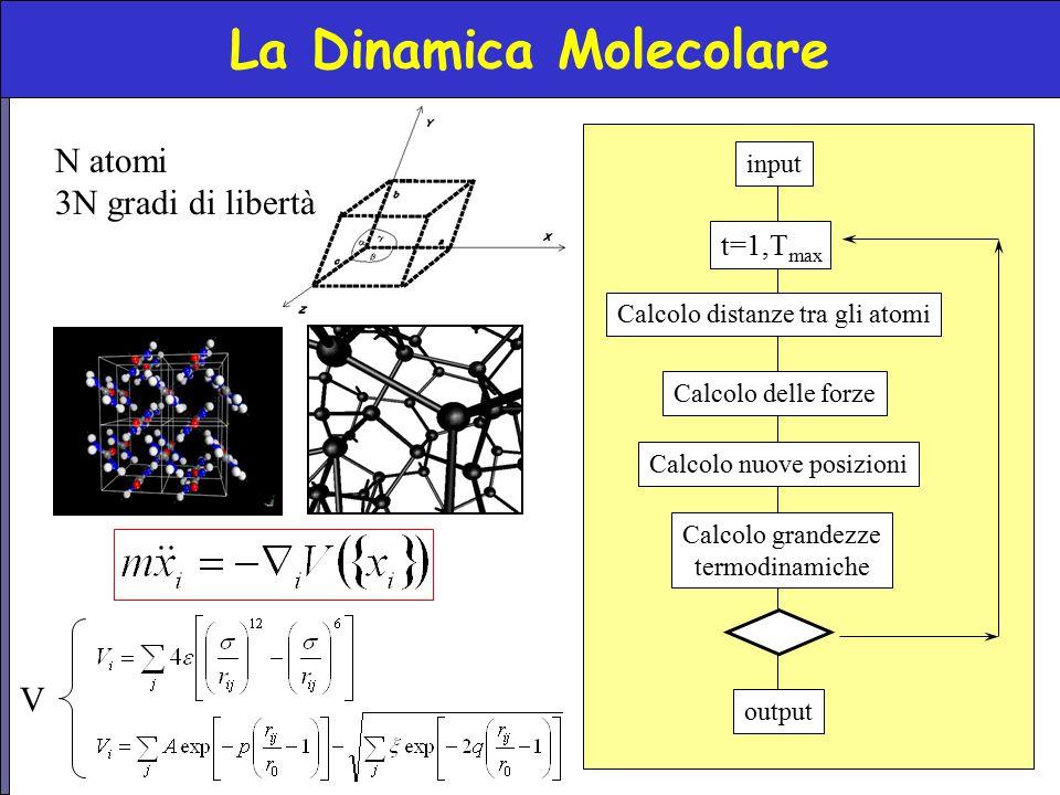 La Dinamica Molecolare N atomi 3N gradi di libertà Calcolo nuove posizioni output input Calcolo distanze tra gli atomi t=1,T max Calcolo delle forze C