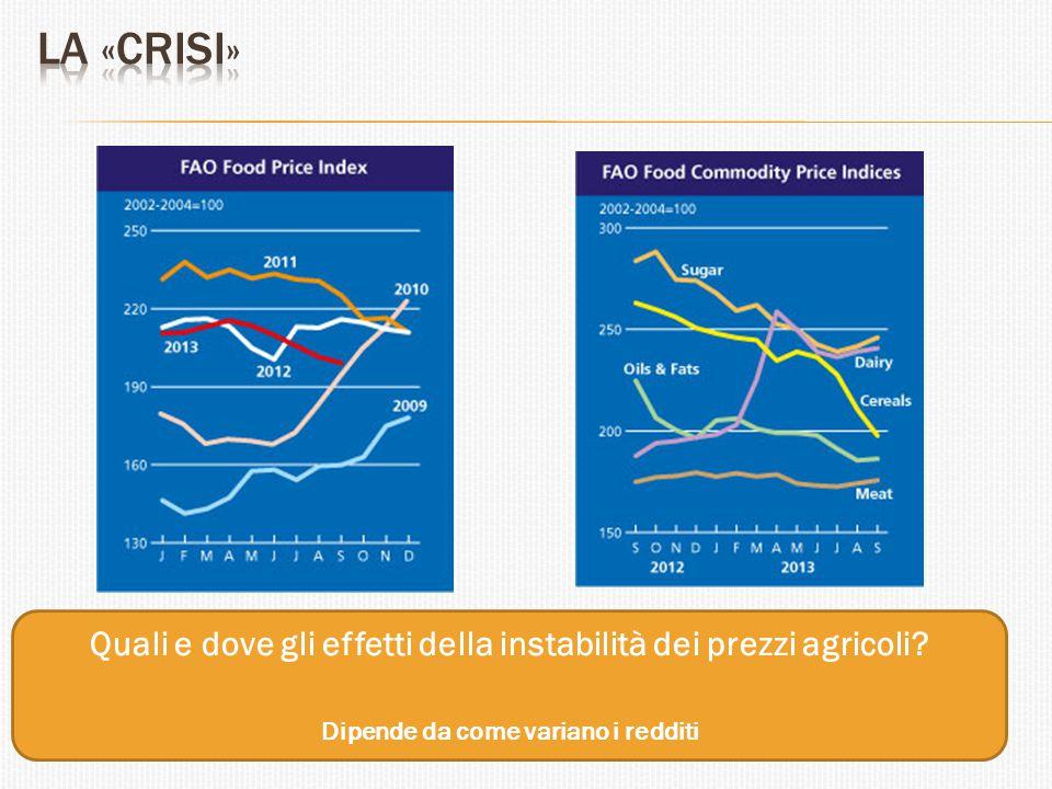 Quali e dove gli effetti della instabilità dei prezzi agricoli? Dipende da come variano i redditi