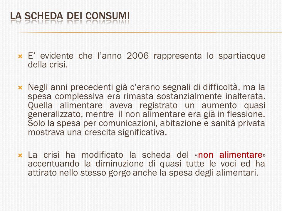  E' evidente che l'anno 2006 rappresenta lo spartiacque della crisi.  Negli anni precedenti già c'erano segnali di difficoltà, ma la spesa complessi