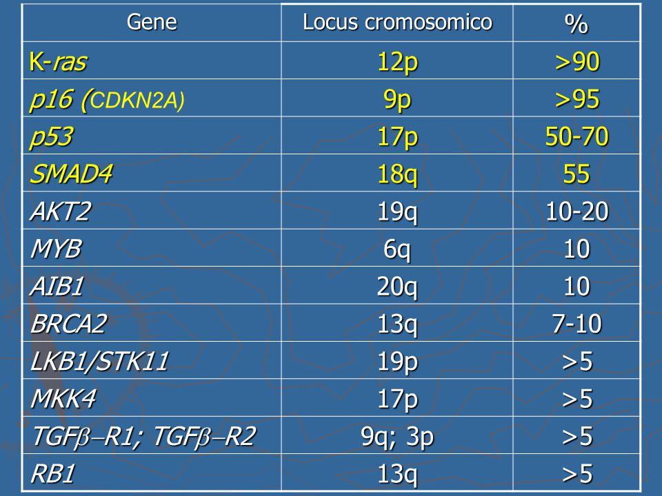 Gene Locus cromosomico % K-ras 12p>90 p16 ( p16 ( CDKN2A)9p>95 p5317p50-70 SMAD418q55 AKT219q10-20 MYB6q10 AIB120q10 BRCA213q7-10 LKB1/STK1119p>5 MKK4
