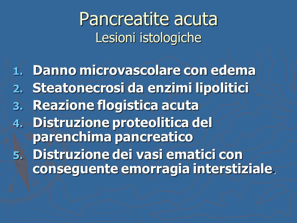 1. Danno microvascolare con edema 2. Steatonecrosi da enzimi lipolitici 3. Reazione flogistica acuta 4. Distruzione proteolitica del parenchima pancre