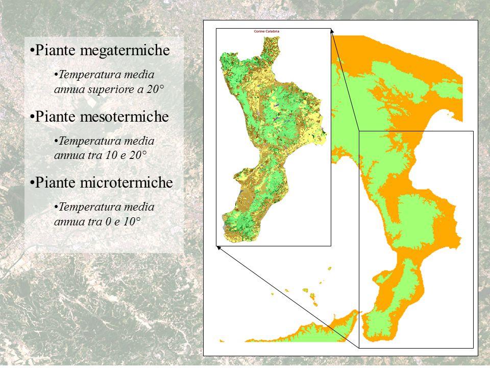 Piante megatermiche Temperatura media annua superiore a 20° Piante mesotermiche Temperatura media annua tra 10 e 20° Piante microtermiche Temperatura
