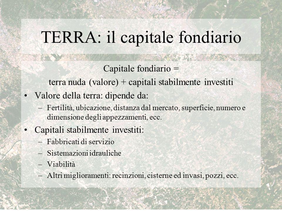 TERRA: il capitale fondiario Capitale fondiario = terra nuda (valore) + capitali stabilmente investiti Valore della terra: dipende da: –Fertilità, ubi