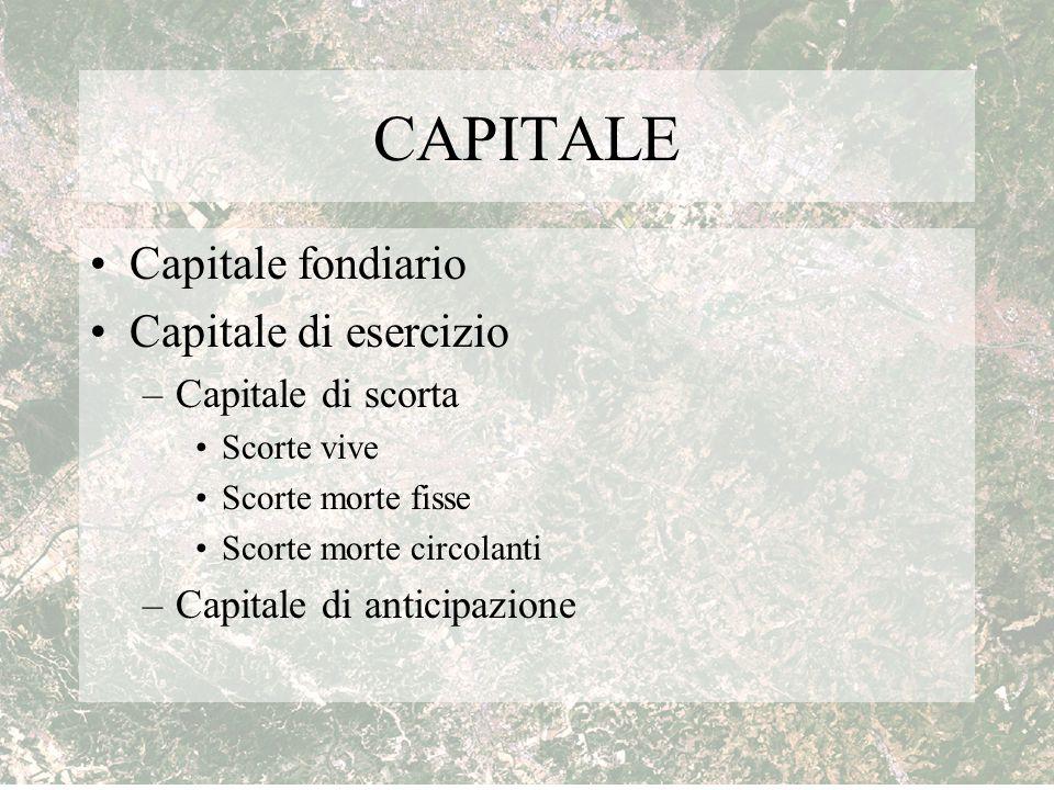 CAPITALE Capitale fondiario Capitale di esercizio –Capitale di scorta Scorte vive Scorte morte fisse Scorte morte circolanti –Capitale di anticipazion
