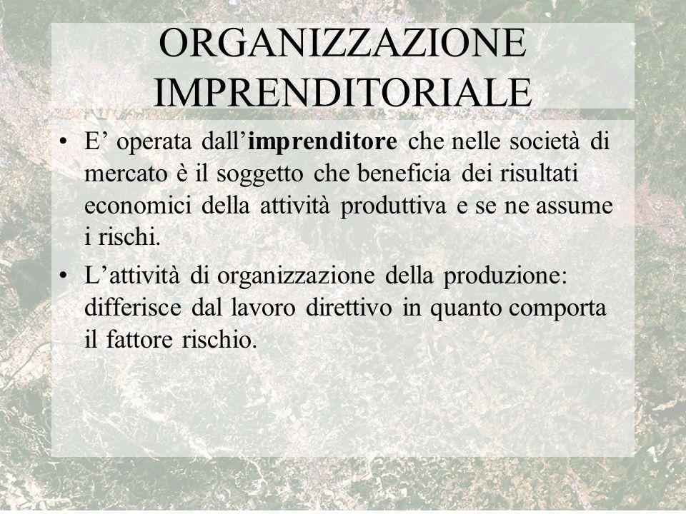 ORGANIZZAZIONE IMPRENDITORIALE E' operata dall'imprenditore che nelle società di mercato è il soggetto che beneficia dei risultati economici della att