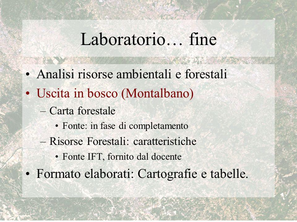 Laboratorio… fine Analisi risorse ambientali e forestali Uscita in bosco (Montalbano) –Carta forestale Fonte: in fase di completamento –Risorse Forest