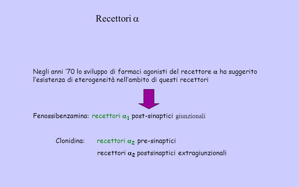 Negli anni '70 lo sviluppo di farmaci agonisti del recettore  ha suggerito l'esistenza di eterogeneità nell'ambito di questi recettori Fenossibenzamina: recettori  1 post-sinaptici giunzionali Clonidina: recettori  2 pre-sinaptici recettori  2 postsinaptici extragiunzionali Recettori 