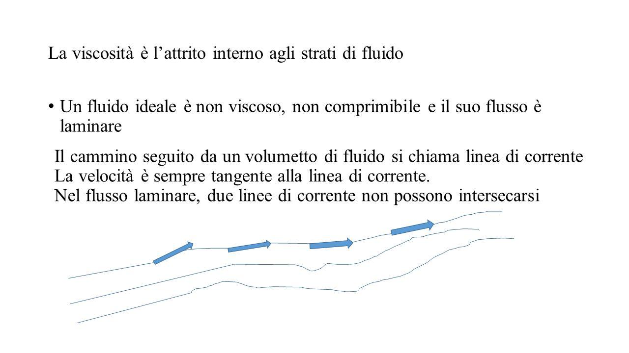 La viscosità è l'attrito interno agli strati di fluido Un fluido ideale è non viscoso, non comprimibile e il suo flusso è laminare Il cammino seguito
