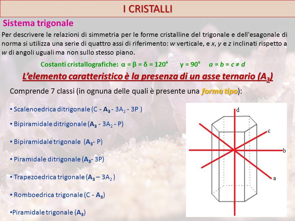 I CRISTALLI Sistema trigonale forma tipo Comprende 7 classi (in ognuna delle quali è presente una forma tipo): Scalenoedrica ditrigonale (C - A 3 - 3A 2 - 3P ) Bipiramidale ditrigonale (A 3 - 3A 2 - P) Bipiramidale trigonale (A 3 - P) Piramidale ditrigonale (A 3 - 3P) Trapezoedrica trigonale (A 3 – 3A 2 ) Romboedrica trigonale (C - A 3 ) Piramidale trigonale (A 3 ) Costanti cristallografiche: α = β = δ = 120° γ = 90° a = b = c ≠ d L'elemento caratteristico è la presenza di un asse ternario (A 3 ) Per descrivere le relazioni di simmetria per le forme cristalline del trigonale e dell esagonale di norma si utilizza una serie di quattro assi di riferimento: w verticale, e x, y e z inclinati rispetto a w di angoli uguali ma non sullo stesso piano.