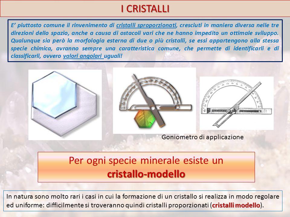 I CRISTALLI Sistema Monoclino forma tipo Comprende 3 classi (in ognuna delle quali è presente una forma tipo): Prismatica (C - A 2 - P) Domatica (P) Sfenoidale (A 2 ) Costanti cristallografiche: α = γ = 90° β ≠ 90° a ≠ b ≠ c L'elemento caratteristico è la presenza di un asse binario (A 2 ) Il sistema monoclino l asse x è inclinato verso l osservatore rispetto a z, e perpendicolare a y.