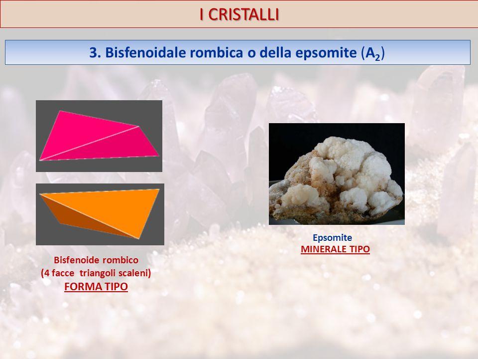 3. Bisfenoidale rombica o della epsomite (A 2 ) I CRISTALLI Epsomite MINERALE TIPO Bisfenoide rombico (4 facce triangoli scaleni) FORMA TIPO