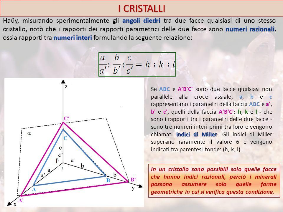 2. Pediale o della parahilgardite I CRISTALLI Pinacoide FORMA TIPO Parahilgardite MINERALE TIPO
