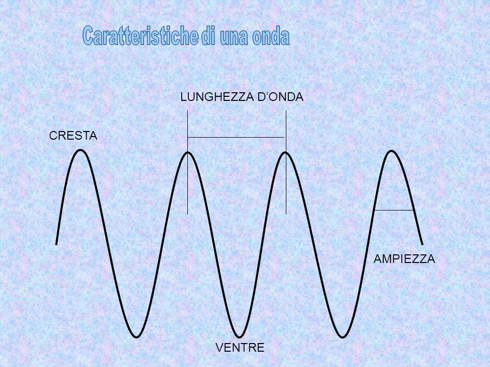 VENTRE CRESTA AMPIEZZA LUNGHEZZA D'ONDA