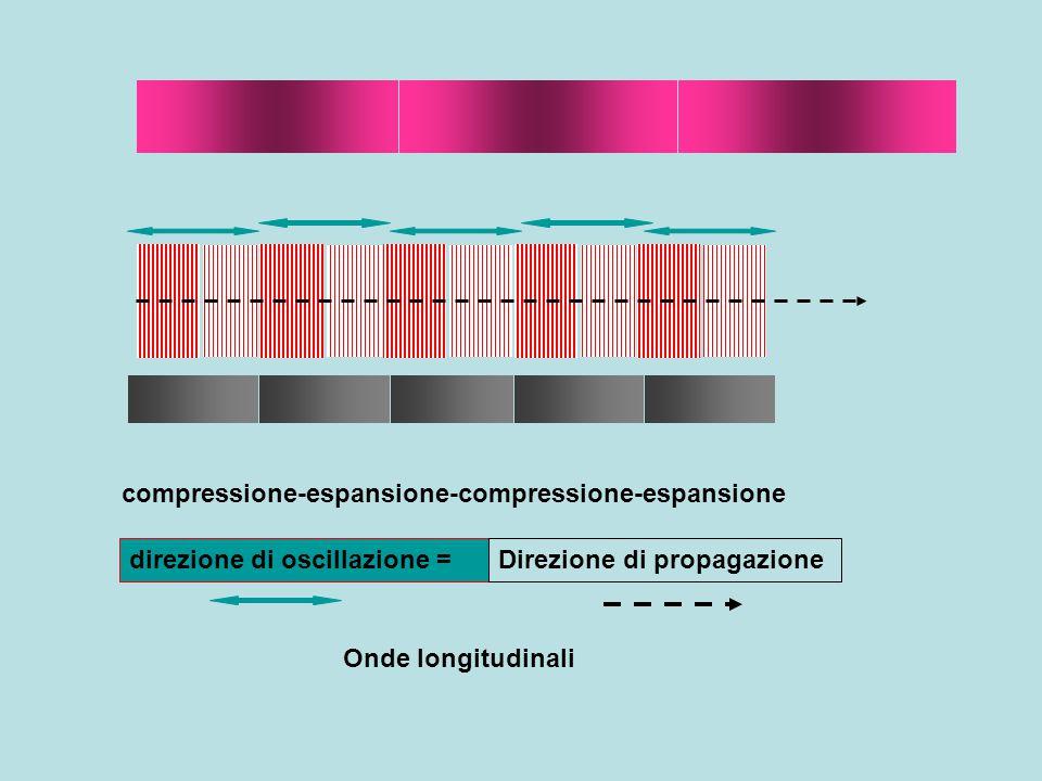 direzione di oscillazione = compressione-espansione-compressione-espansione Direzione di propagazione Onde longitudinali Asta metallica:si trasmette energia, senza spostamento macroscopico della materia
