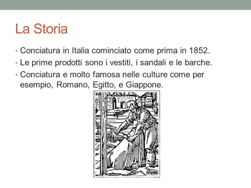 La Storia Conciatura in Italia cominciato come prima in 1852.