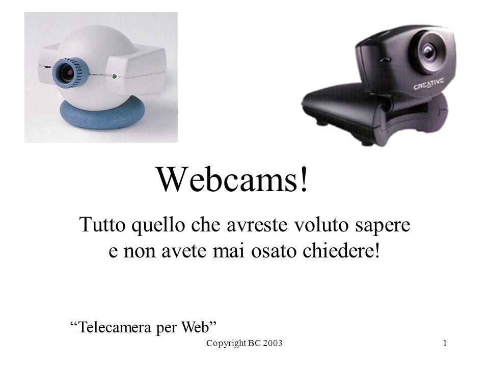 """Copyright BC 20031 Webcams! Tutto quello che avreste voluto sapere e non avete mai osato chiedere! """"Telecamera per Web"""""""