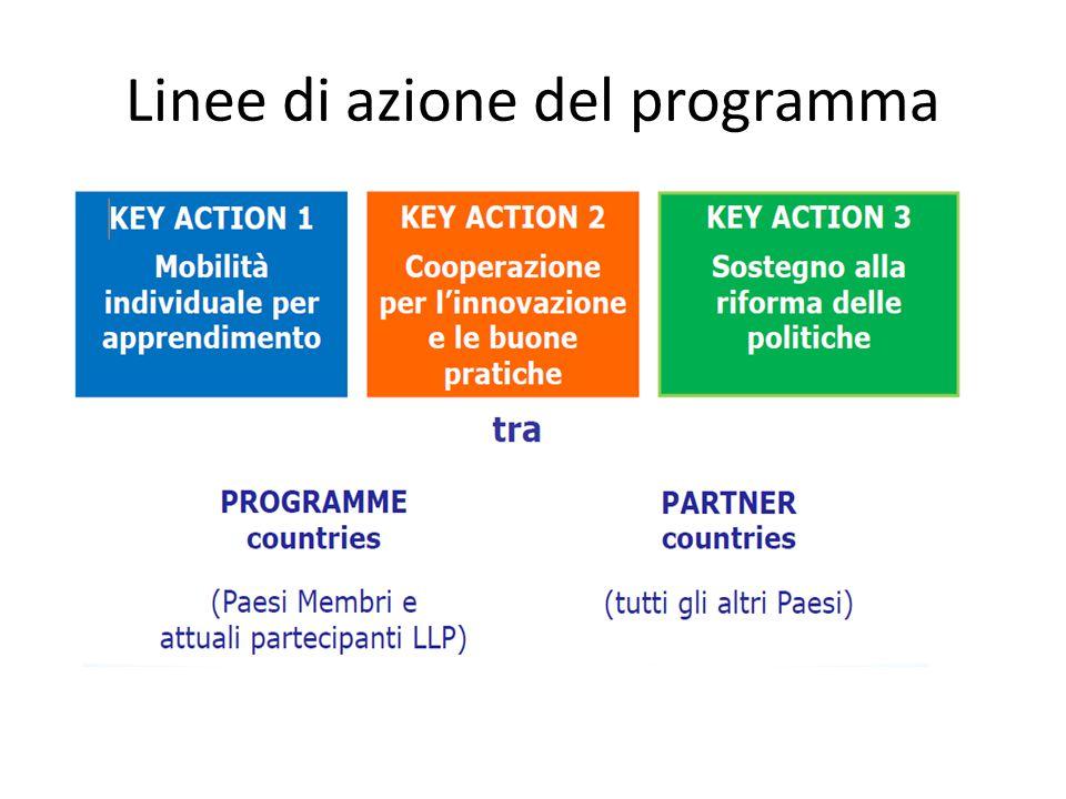 Linee di azione del programma