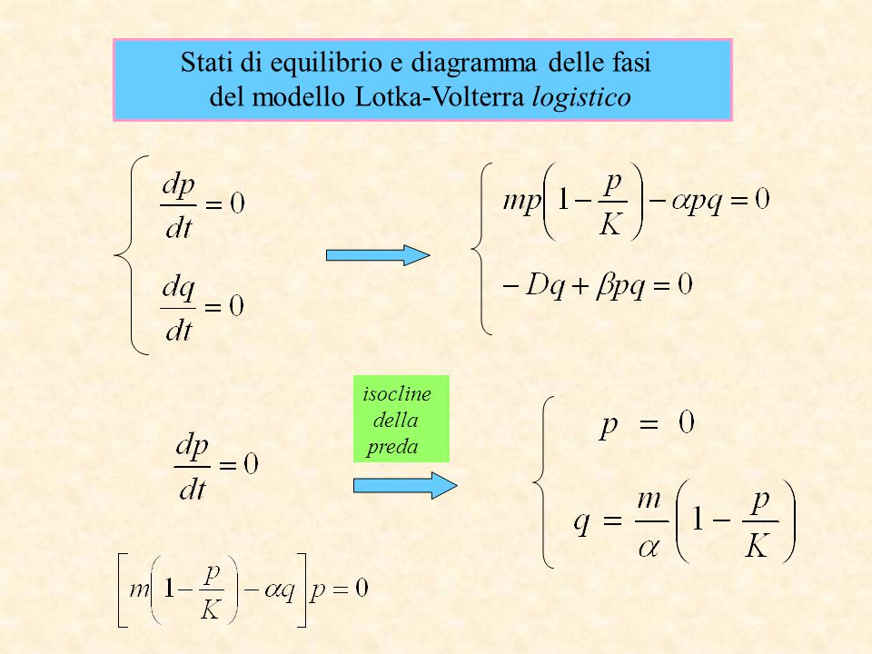 Stati di equilibrio e diagramma delle fasi del modello Lotka-Volterra logistico isocline della preda
