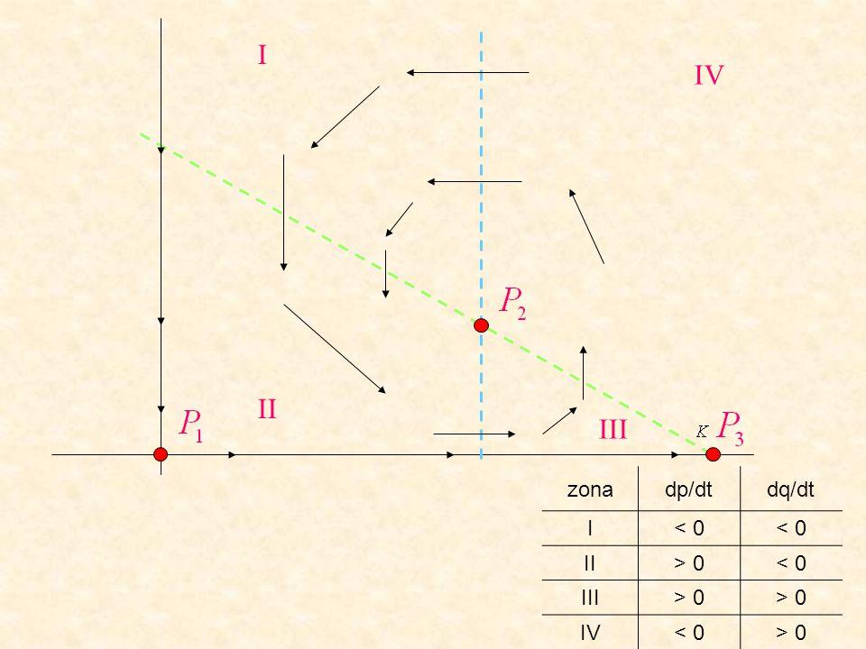In assenza di prede (p=0), P1 è attrattivo i predatori si estinguono In assenza di predatori (q=0), P3 è attrattivo le prede crescono raggiungendo la capacità portante Se prede e predatori coesistono P2 è stabile P1 e P3 sono instabili