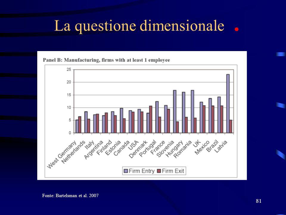 81 La questione dimensionale. Fonte: Bartelsman et al. 2007