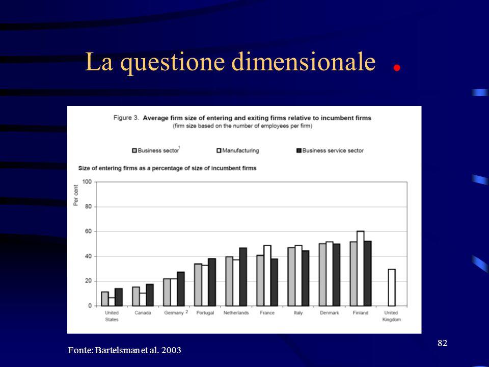 82 La questione dimensionale. Fonte: Bartelsman et al. 2003