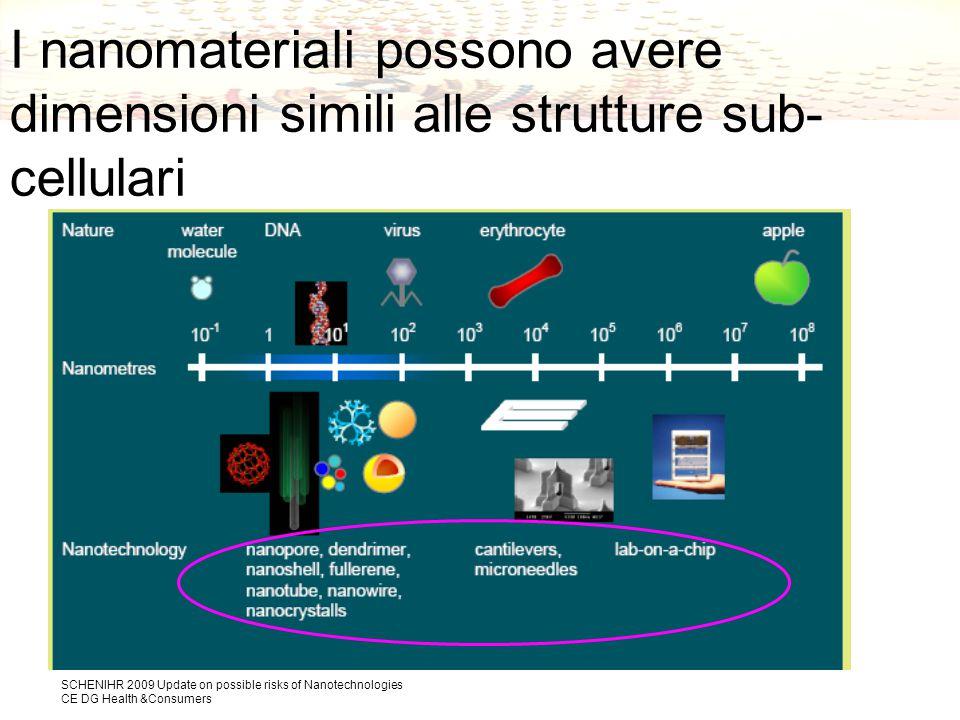 SCHENIHR 2009 Update on possible risks of Nanotechnologies CE DG Health &Consumers I nanomateriali possono avere dimensioni simili alle strutture sub- cellulari