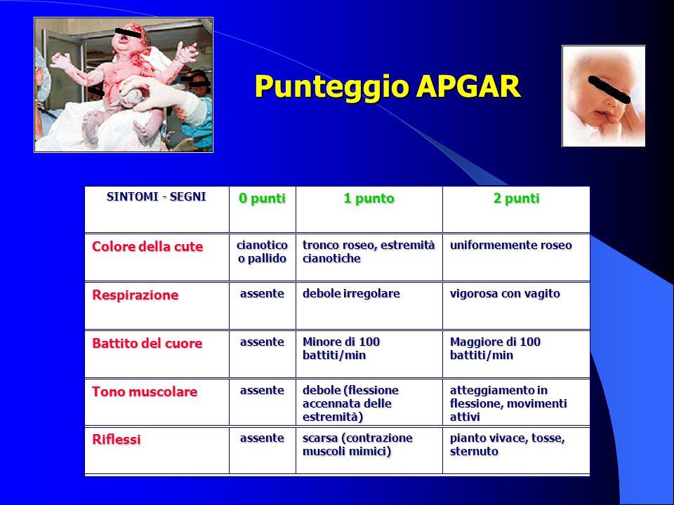 Punteggio APGAR SINTOMI - SEGNI 0 punti 1 punto 2 punti Colore della cute cianotico o pallido tronco roseo, estremità cianotiche uniformemente roseo R