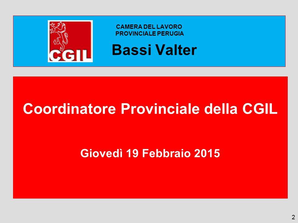 CAMERA DEL LAVORO PROVINCIALE PERUGIA Bassi Valter Bassi Valter Coordinatore Provinciale della CGIL Giovedì 19 Febbraio 2015 2