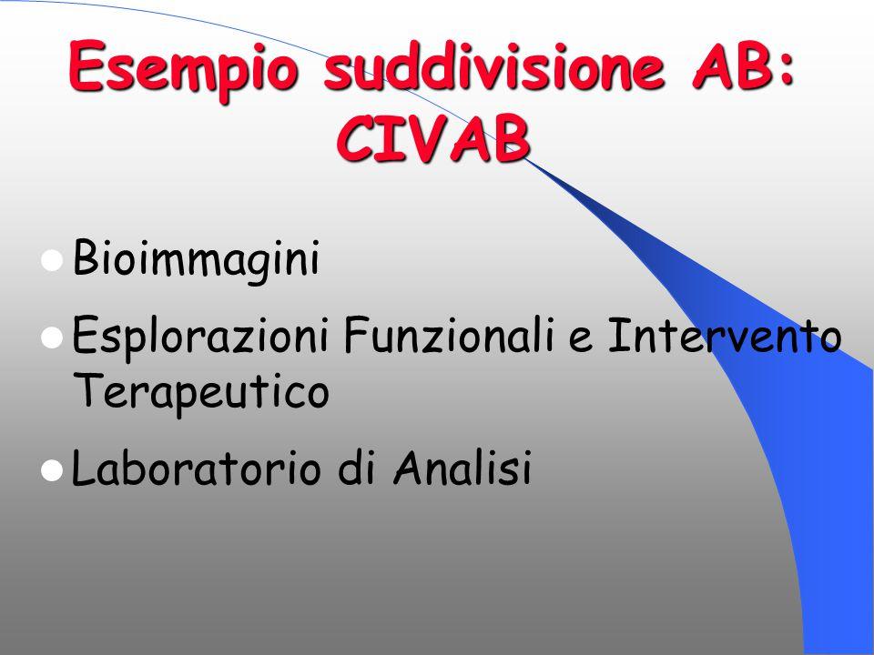 Esempio suddivisione AB: CIVAB Bioimmagini Esplorazioni Funzionali e Intervento Terapeutico Laboratorio di Analisi