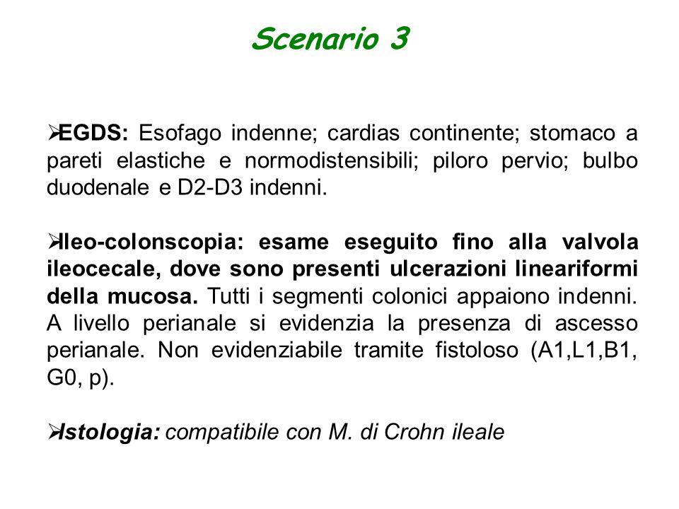 Scenario 3  EGDS: Esofago indenne; cardias continente; stomaco a pareti elastiche e normodistensibili; piloro pervio; bulbo duodenale e D2-D3 indenni