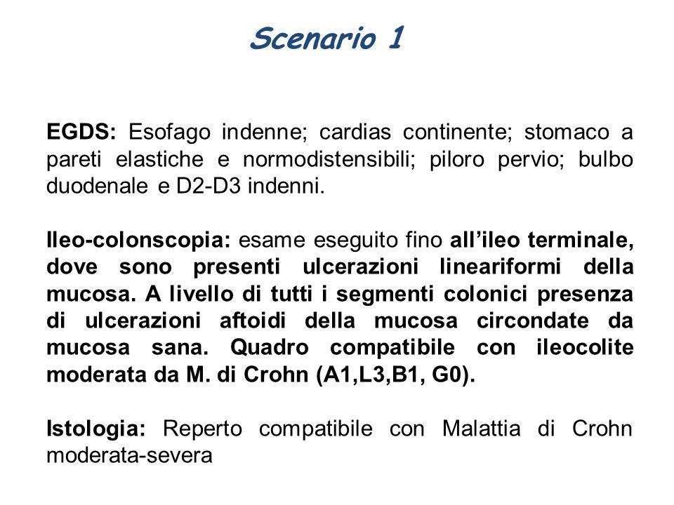 Scenario 1 EGDS: Esofago indenne; cardias continente; stomaco a pareti elastiche e normodistensibili; piloro pervio; bulbo duodenale e D2-D3 indenni.