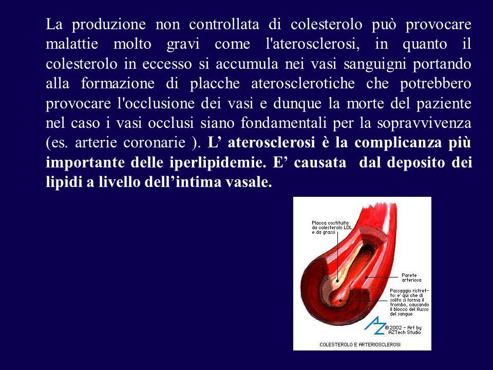 La produzione non controllata di colesterolo può provocare malattie molto gravi come l aterosclerosi, in quanto il colesterolo in eccesso si accumula nei vasi sanguigni portando alla formazione di placche aterosclerotiche che potrebbero provocare l occlusione dei vasi e dunque la morte del paziente nel caso i vasi occlusi siano fondamentali per la sopravvivenza (es.