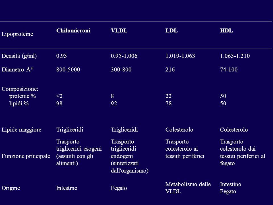 Lipoproteine ChilomicroniVLDLLDLHDL Densità (g/ml)0.930.95-1.0061.019-1.0631.063-1.210 Diametro Å*800-5000300-80021674-100 Composizione: proteine % lipidi % <2 98 8 92 22 78 50 Lipide maggioreTrigliceridi Colesterolo Funzione principale Trasporto trigliceridi esogeni (assunti con gli alimenti) Trasporto trigliceridi endogeni (sintetizzati dall organismo) Trasporto colesterolo ai tessuti periferici Trasporto colesterolo dai tessuti periferici al fegato OrigineIntestinoFegato Metabolismo delle VLDL Intestino Fegato