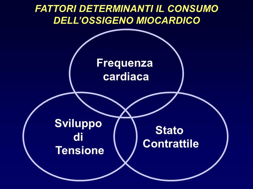 REGOLAZIONE DEL FLUSSO CORONARICO Poiché la tensione ventricolare sviluppata durante la sistole comprime i vasi intramiocardici, la maggior parte del flusso coronarico avviene durante la diastole.
