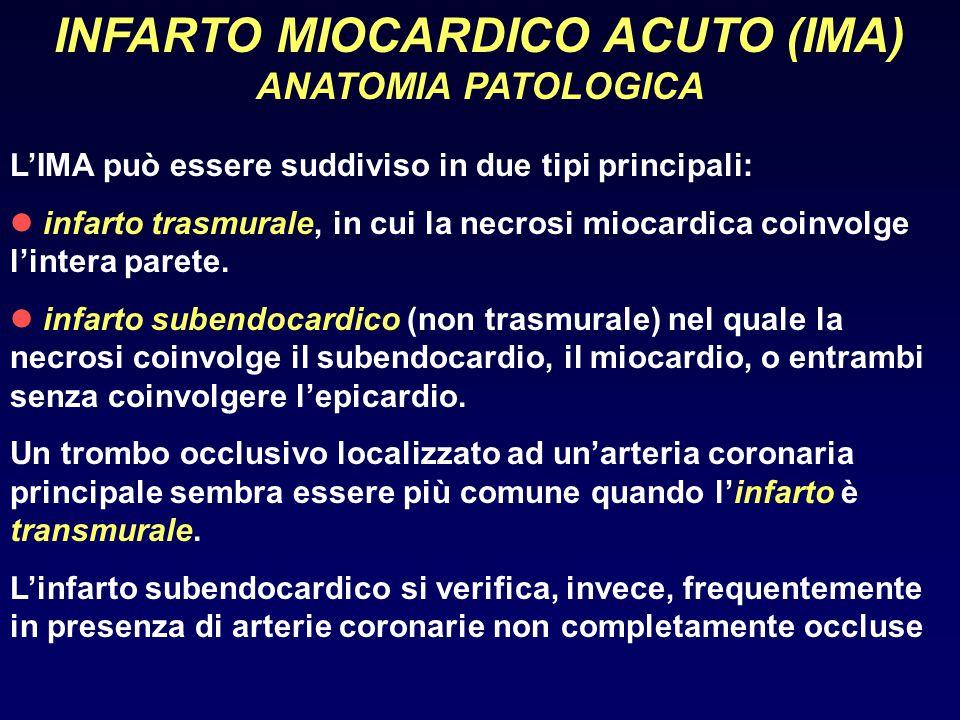INFARTO MIOCARDICO ACUTO (IMA) ANATOMIA PATOLOGICA L'IMA può essere suddiviso in due tipi principali: infarto trasmurale, in cui la necrosi miocardica