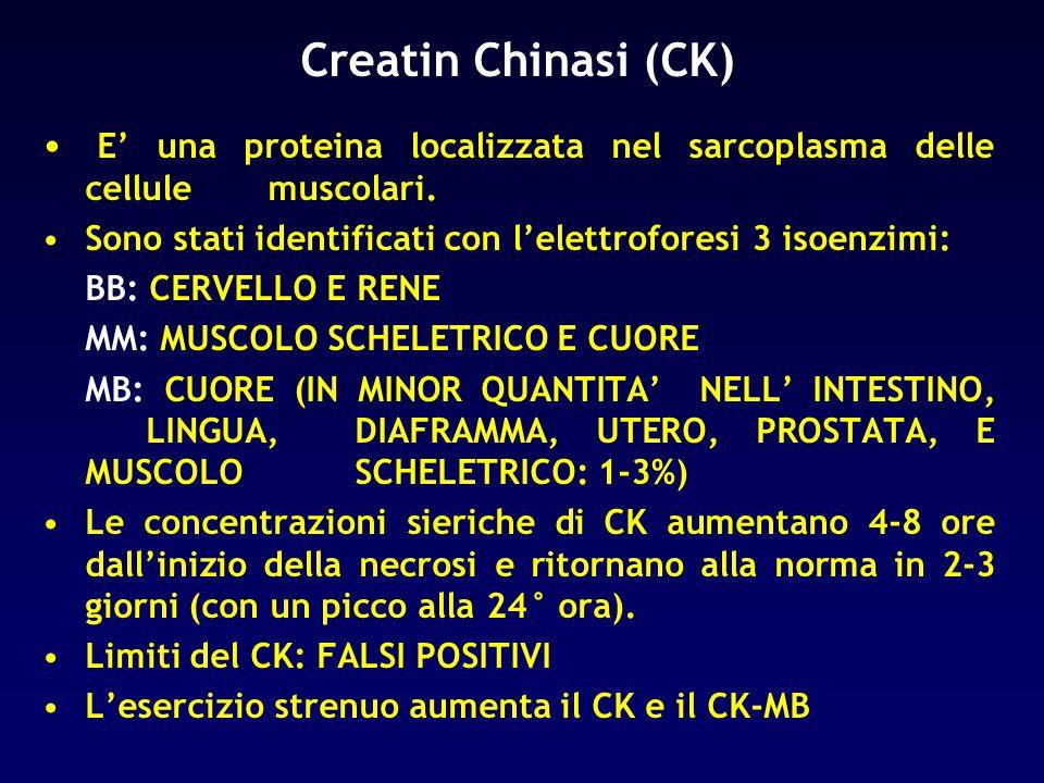 Creatin Chinasi (CK) E' una proteina localizzata nel sarcoplasma delle cellule muscolari. Sono stati identificati con l'elettroforesi 3 isoenzimi: BB:
