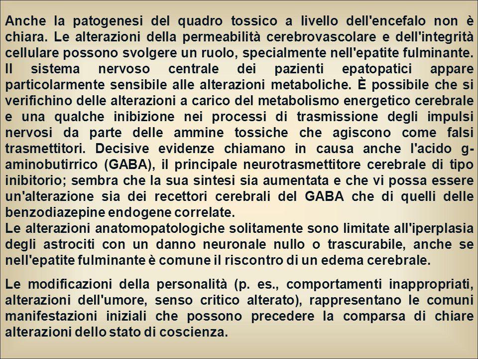 Anche la patogenesi del quadro tossico a livello dell'encefalo non è chiara. Le alterazioni della permeabilità cerebrovascolare e dell'integrità cellu
