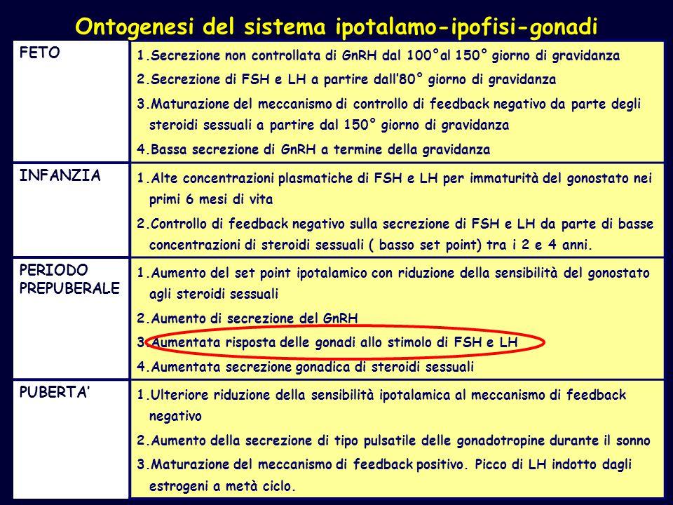 MODIFICAZIONI DI NEUROTRASMETTITORI E NEUROMODULATORI IN PRE/POSTMENOPAUSA PRE/POSTMENOPAUSASOTTO HRT NORADRENALINA TONOTONO = DOPAMINA TONO =/ TONO = SEROTONINA TONOTONO = ACETILCOLINA TONOTONO = SISTEMA OPPIOIDE TONO TONO =