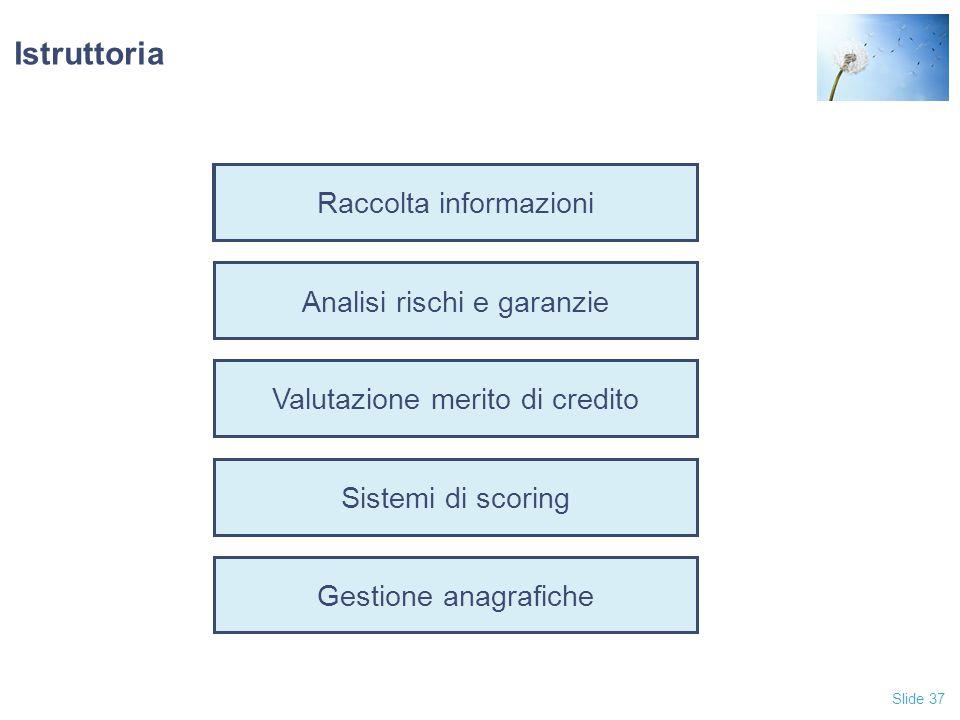 Slide 37 Raccolta informazioni Analisi rischi e garanzie Valutazione merito di credito Sistemi di scoring Gestione anagrafiche Istruttoria