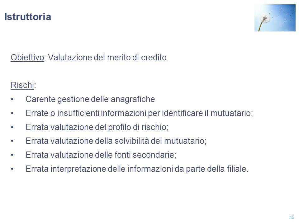 45 Istruttoria Obiettivo: Valutazione del merito di credito. Rischi: Carente gestione delle anagrafiche Errate o insufficienti informazioni per identi