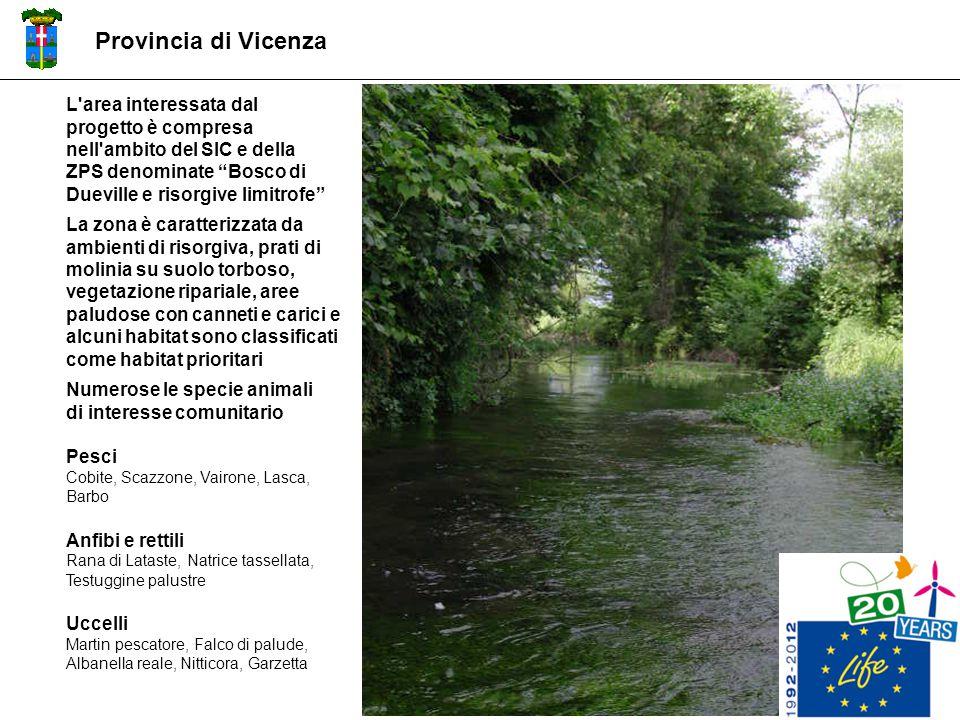"""L'area interessata dal progetto è compresa nell'ambito del SIC e della ZPS denominate """"Bosco di Dueville e risorgive limitrofe"""" La zona è caratterizza"""
