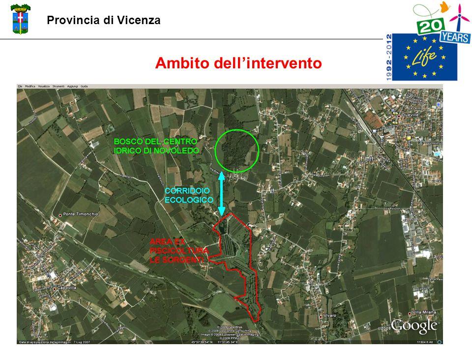Ambito dell'intervento Provincia di Vicenza