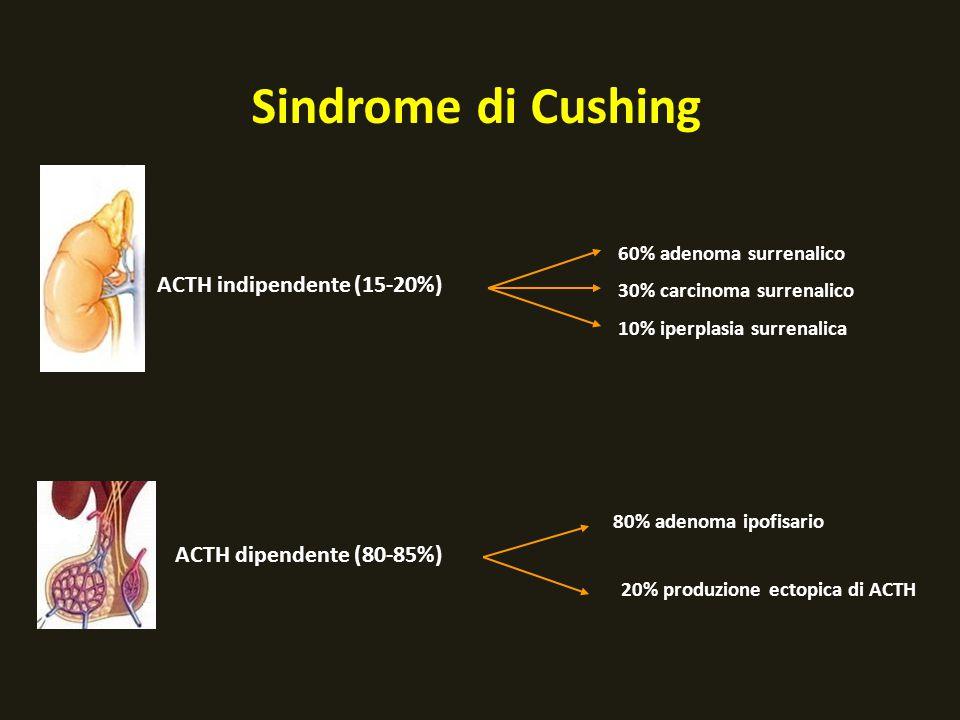 Sindrome di Cushing ACTH indipendente (15-20%) 60% adenoma surrenalico 30% carcinoma surrenalico ACTH dipendente (80-85%) 80% adenoma ipofisario 20% p